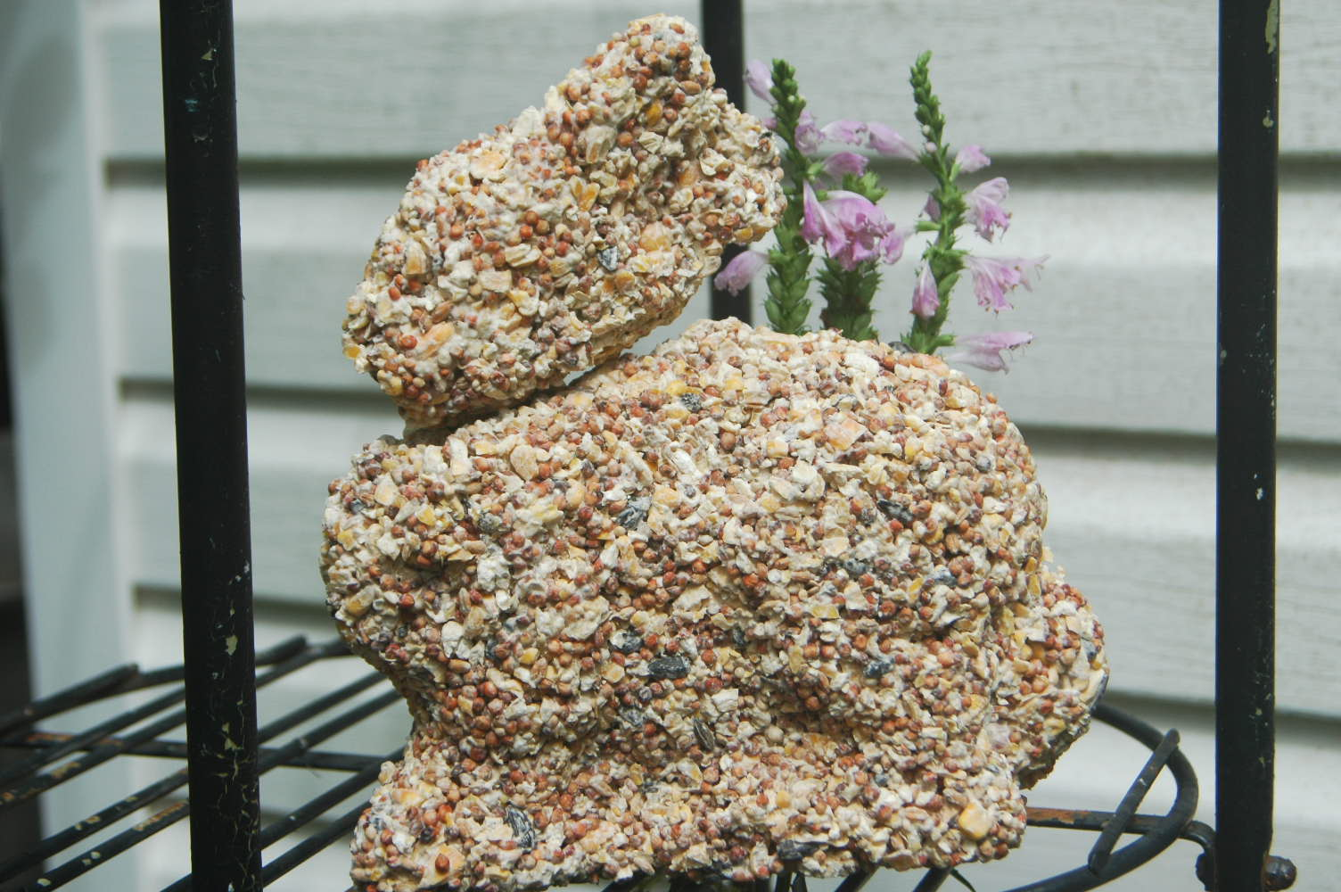 Making your own bird seed treats or how to avoid catalog price eta solutioingenieria Image collections